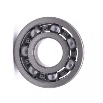 China Factory SKF, NSK, NTN, Koyo NACHI Deep Groove Ball Bearing 6002 6004 6202